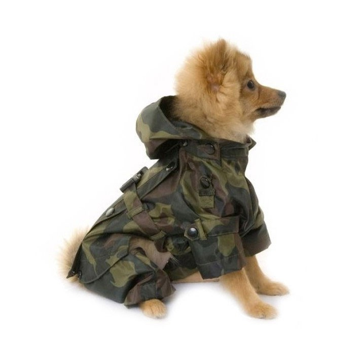 Thunder Jacket For Dogs South Africa