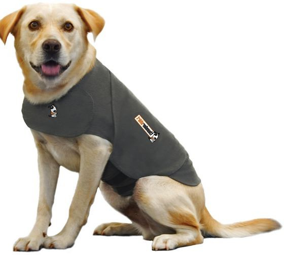 Thunder Jacket For Dogs Uk