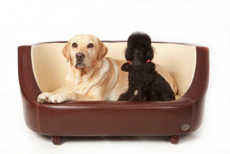Wood Dog Beds For Large Dogs