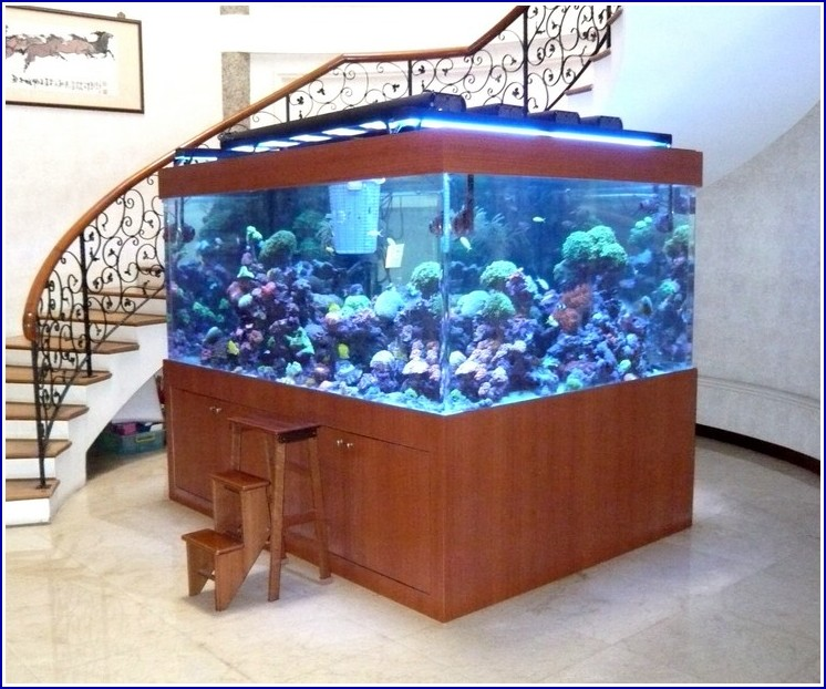 Acrylic Fish Tank Designs