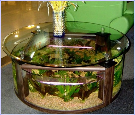 Acrylic Fish Tank Diy