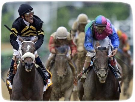 Belmont Horse Race 2013