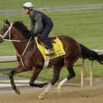 Belmont Horse Race 2014