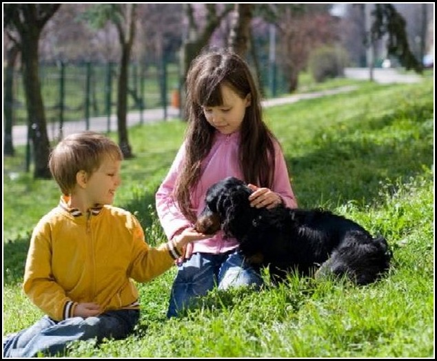 Best Dog For Allergies And Kids