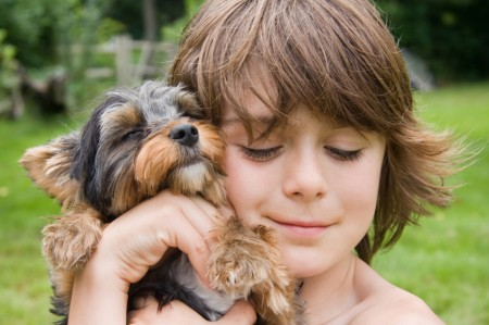 Best Dogs For Families With Young Children