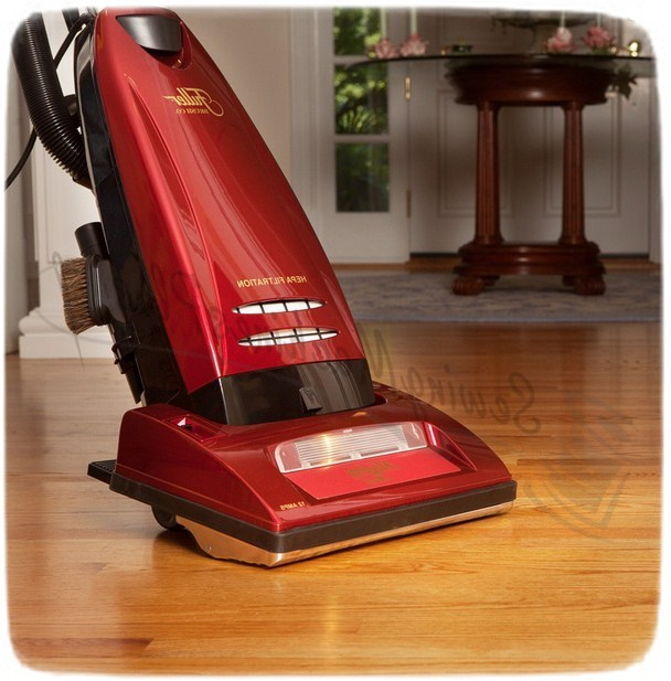Best Vacuum For Pet Hair On Wood Floors