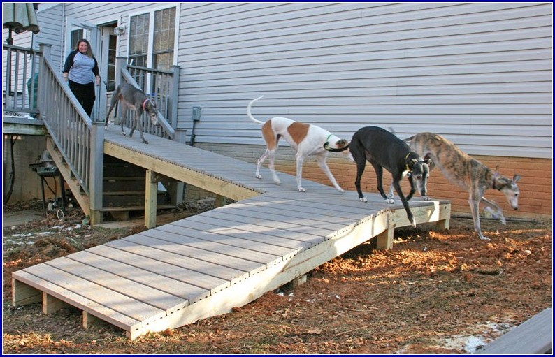 Building Ramps For Dogs