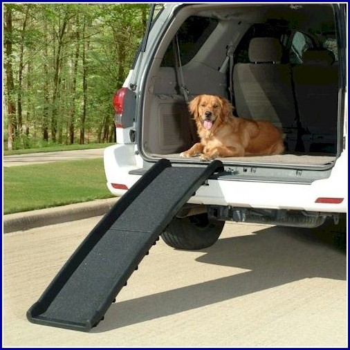 Car Ramps For Dogs