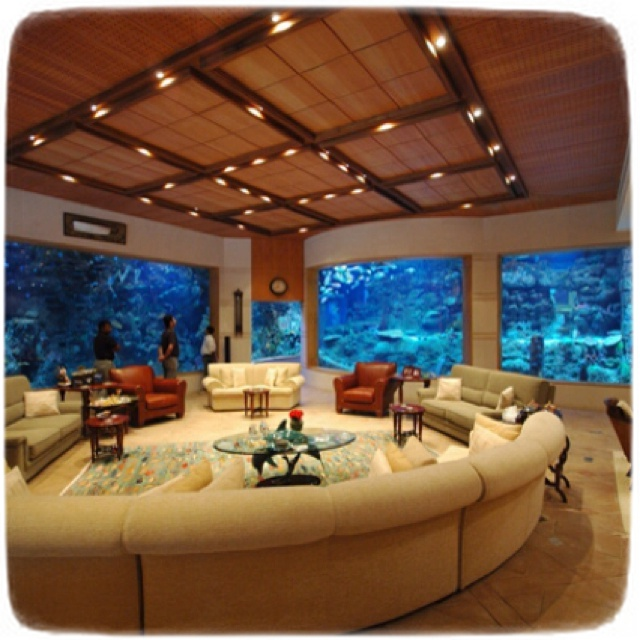 Cool Fish Tanks For Bedrooms