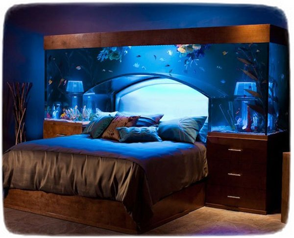 Cool Fish Tanks For Kids