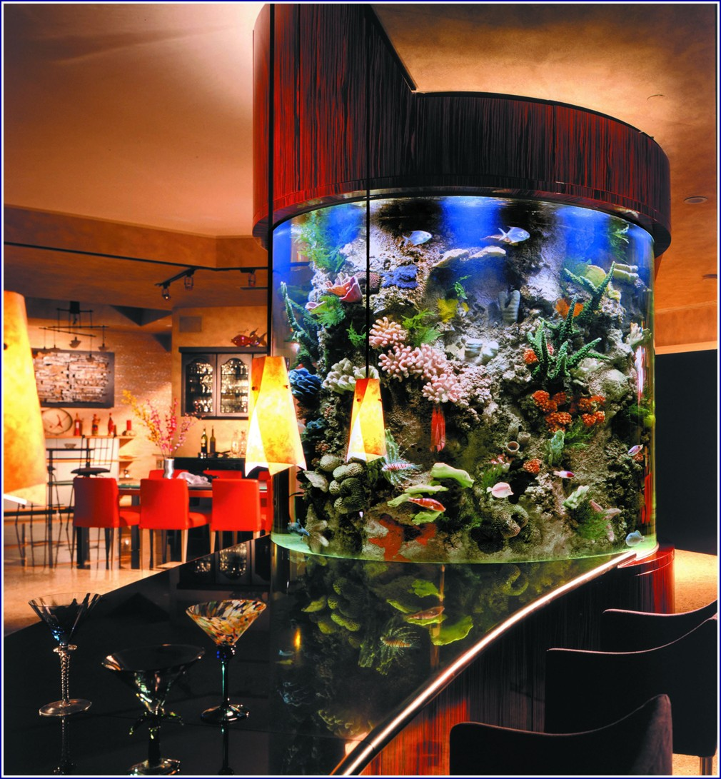 Custom Fish Tanks Bar