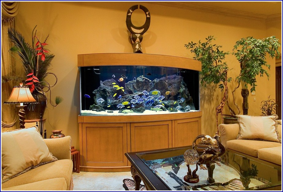Custom Fish Tanks California