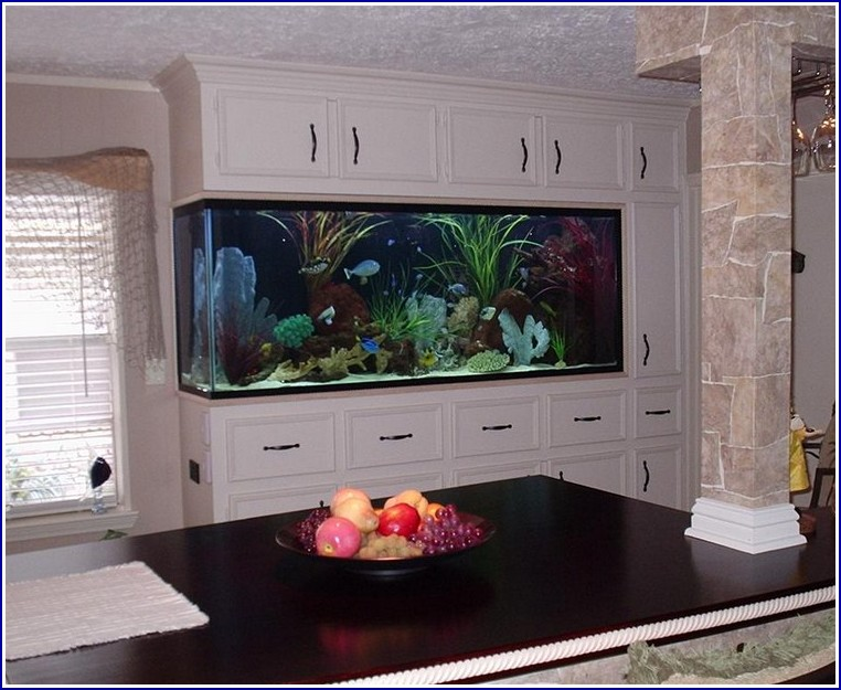 Custom Fish Tanks Houston