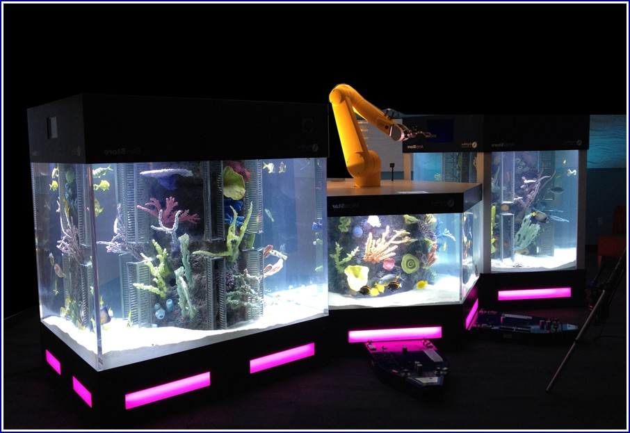 Custom Fish Tanks Las Vegas