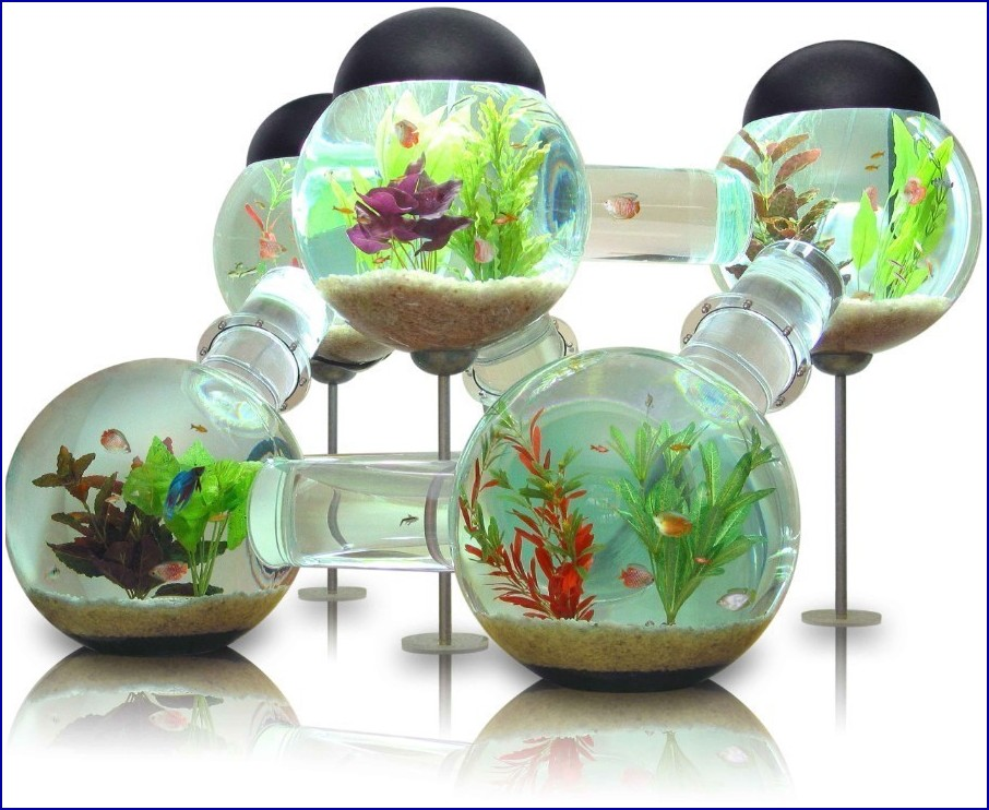 Cute Fish Tank Accessories