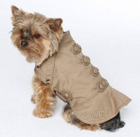 Designer Dog Clothes Juicy Couture