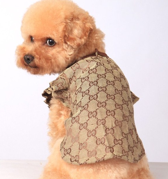 Designer Dog Clothes London