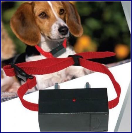 Dog Bark Collars Amazon