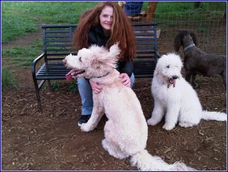 Dog Breeders In Nj State