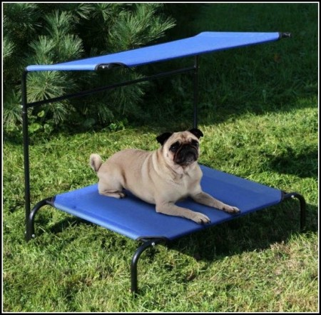 Dog Cooling Beds For Outdoors