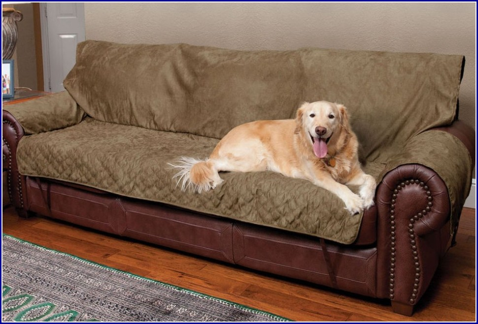 Dog Couch Covers Furniture Protector