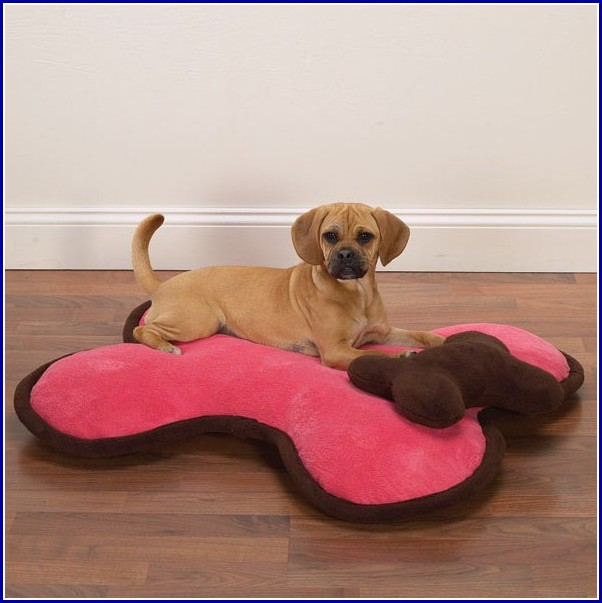 Dog Ramps For Beds Australia