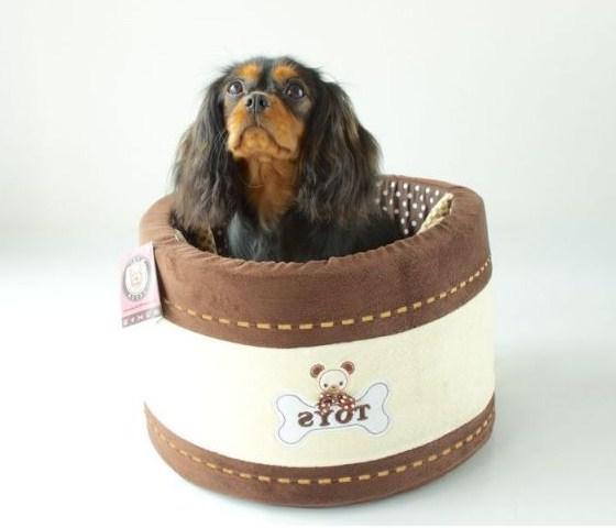 Dog Toy Box Uk