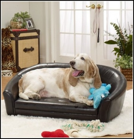 Extra Large Dog Bed Amazon