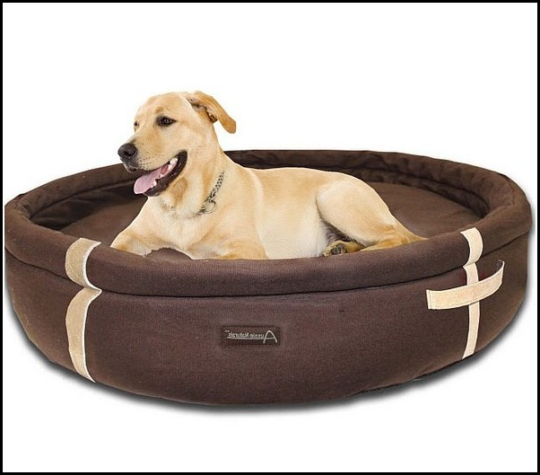 Extra Large Dog Bed Uk