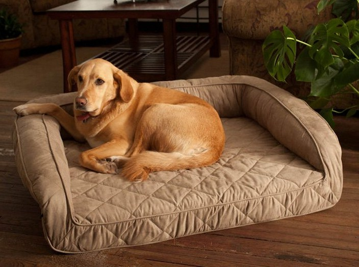 Extra Large Dog Beds For Mastiffs