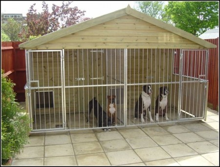 Extra Large Dog Kennels