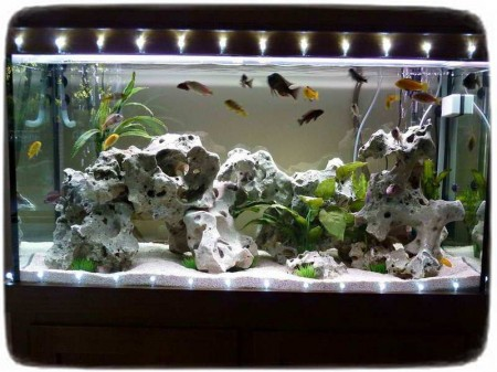Fish Tank Decorations Diy