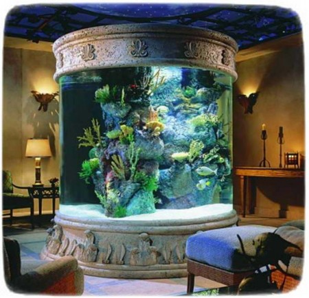 Fish Tank Decorations Ideas