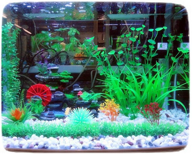 Fish Tank Decorations Plants