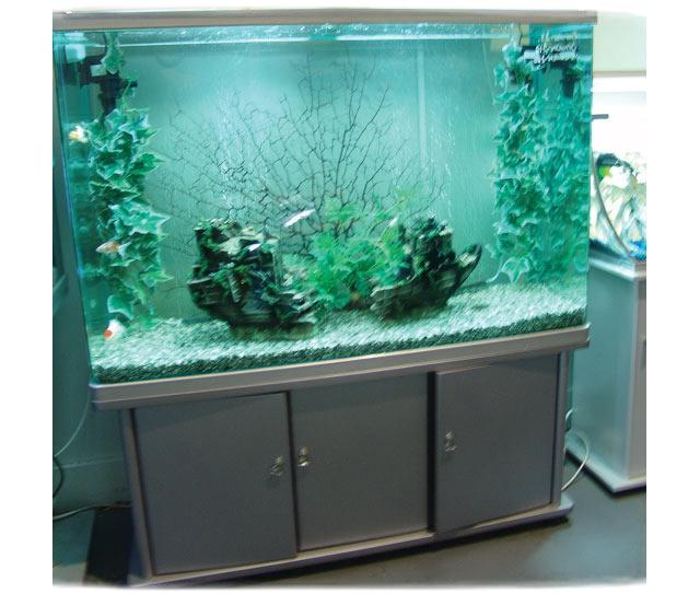 Fish Tank Decorations Uk