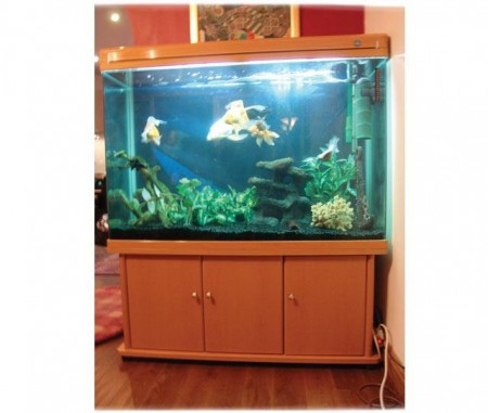 Fish Tank Stand Designs