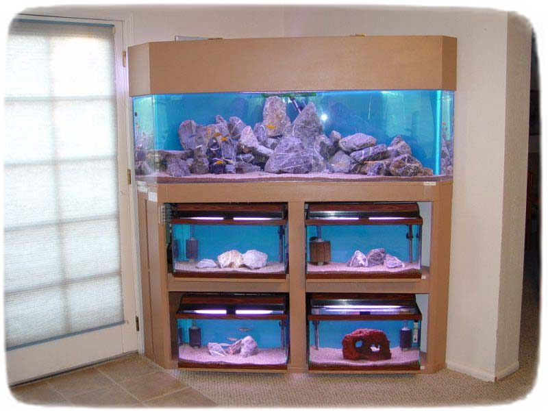 Fish Tank Stand Diy