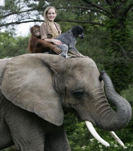 Funny Elephant Pictures With Girls