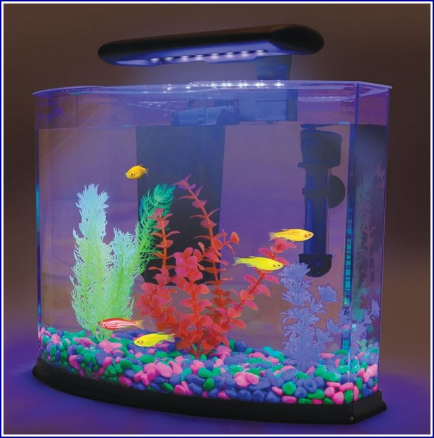 Glow In The Dark Fish Tank Accessories