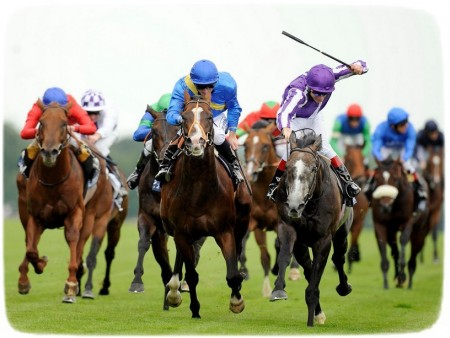 Images Of Horses Racing