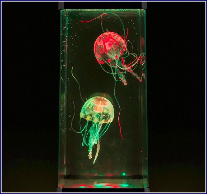 Jellyfish Tank Uk