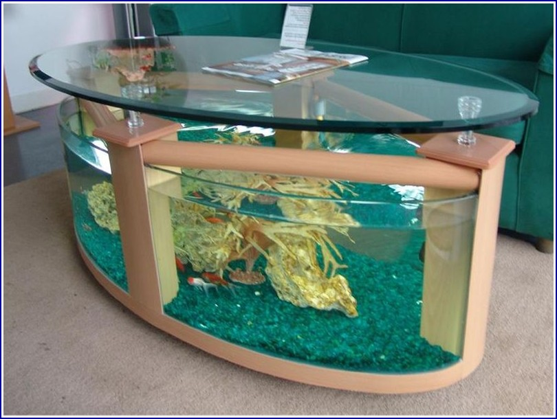 Large Acrylic Fish Tanks