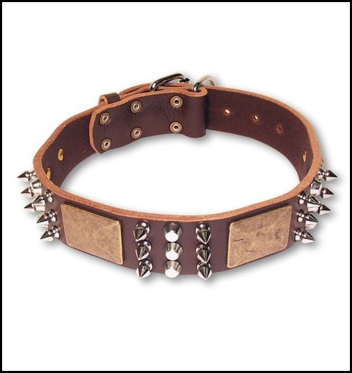 Large Dog Collars Canada