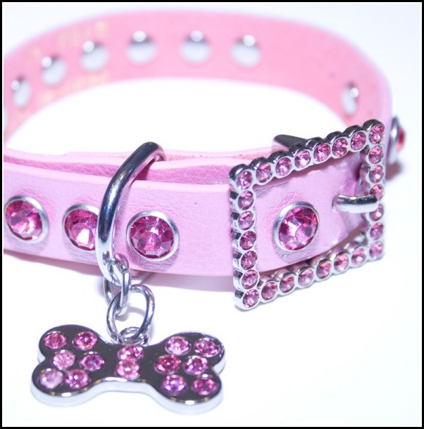 Large Dog Collars With Bling