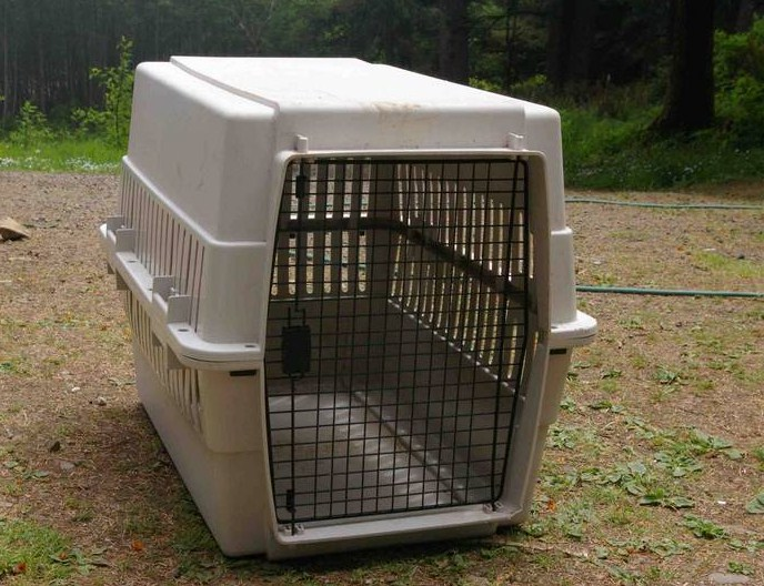 Large Dog Crates For Pitbulls