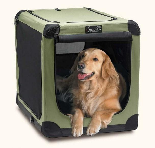 Large Dog Crates Petco