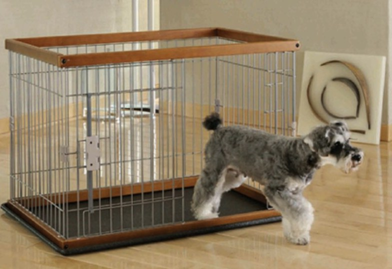 Large Dog Crates Petsmart