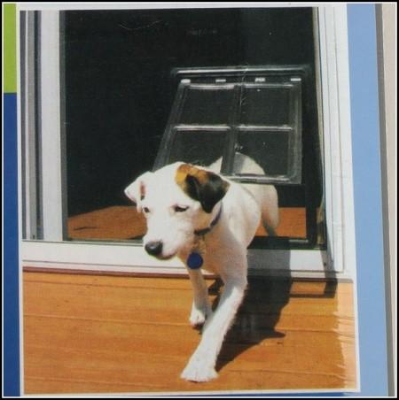 Large Dog Door For Window