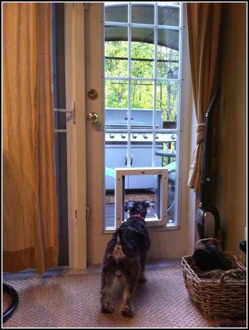 Large Dog Door Sliding Glass