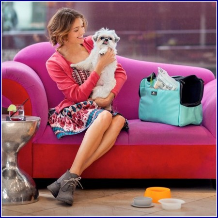 Luxury Pink Dog Beds